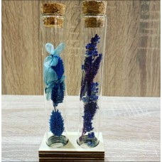 2 Little Vases with Dried Flowers